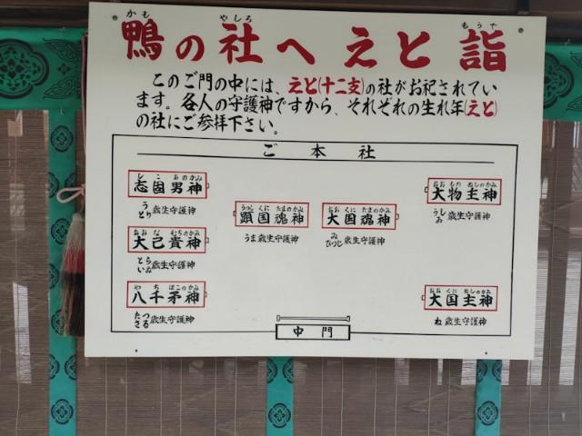 f:id:hitachibana:20200923230147j:image