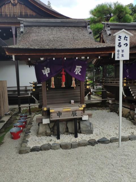 f:id:hitachibana:20200923230331j:image