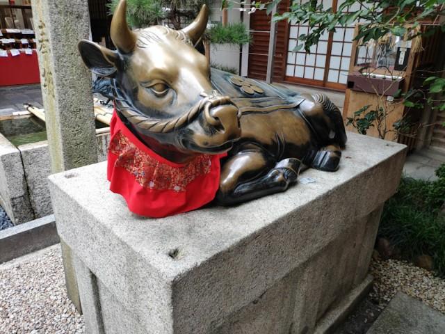 f:id:hitachibana:20200929082451j:image