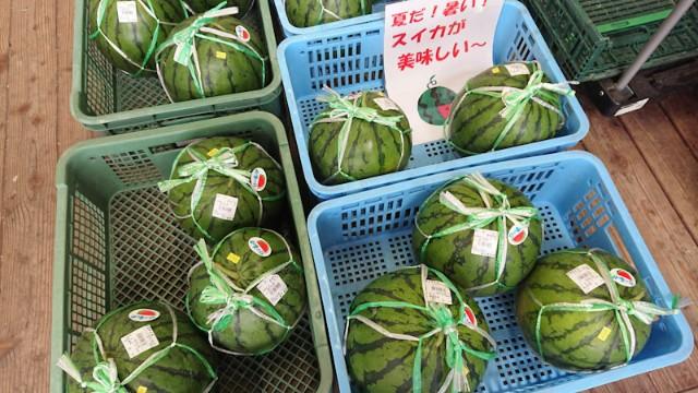 f:id:hitachibana:20201018134059j:image