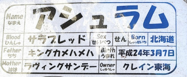 f:id:hitachibana:20201205185531j:image