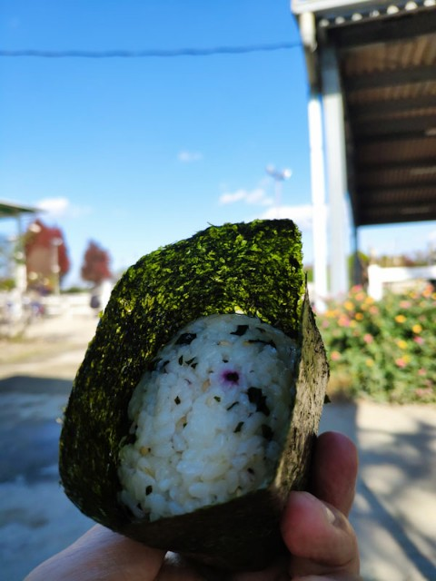 f:id:hitachibana:20201212111710j:image