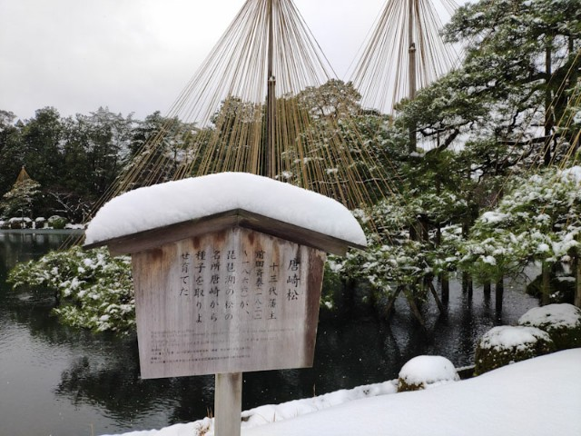 f:id:hitachibana:20201224003527j:image