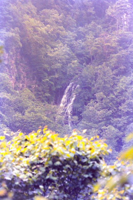 f:id:hitachibana:20210118012549j:image
