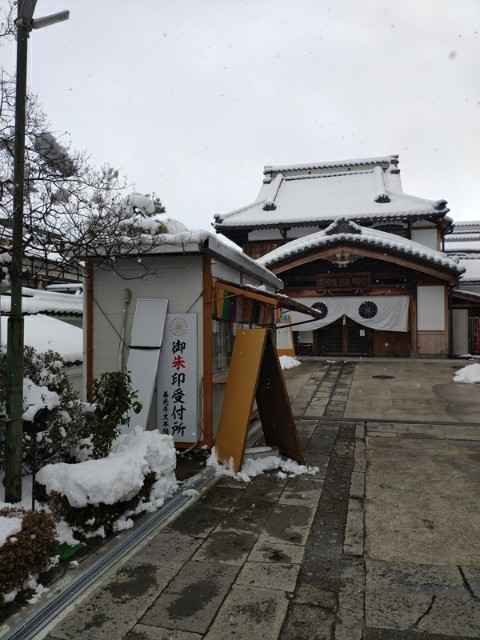 f:id:hitachibana:20210224131316j:image