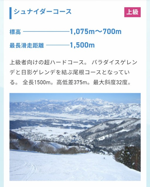 f:id:hitachibana:20210301165120j:image
