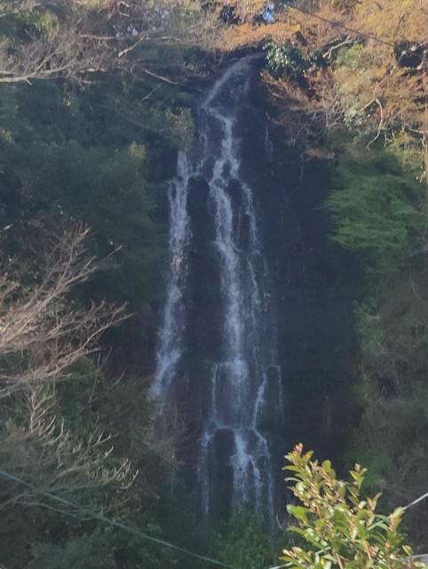 f:id:hitachibana:20210330080443j:image
