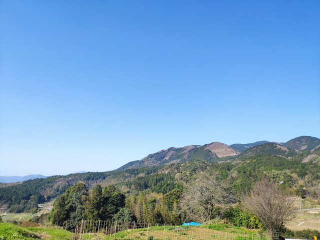 f:id:hitachibana:20210330080505j:image