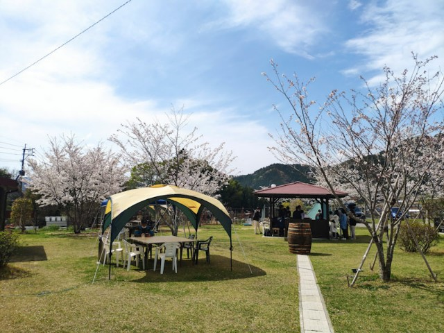 f:id:hitachibana:20210404014438j:image