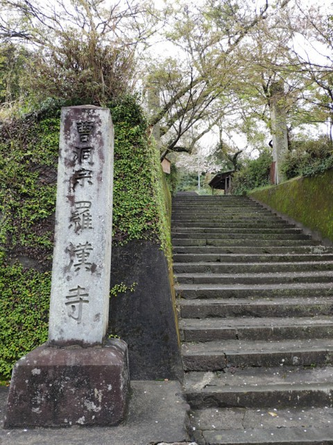f:id:hitachibana:20210408080724j:image