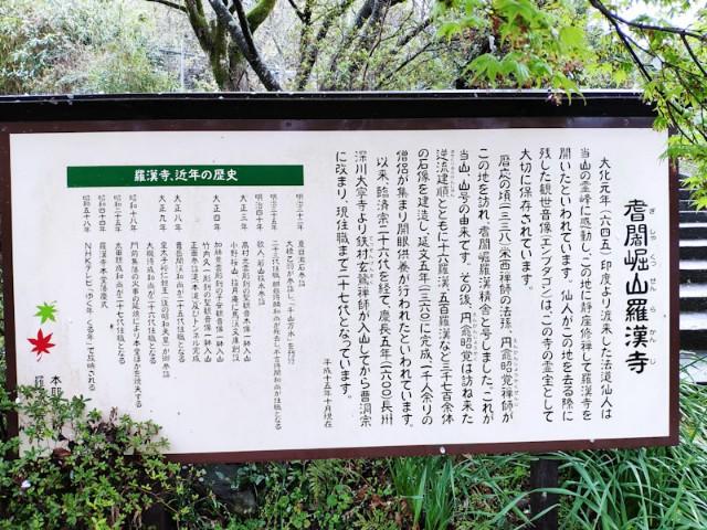 f:id:hitachibana:20210408080738j:image
