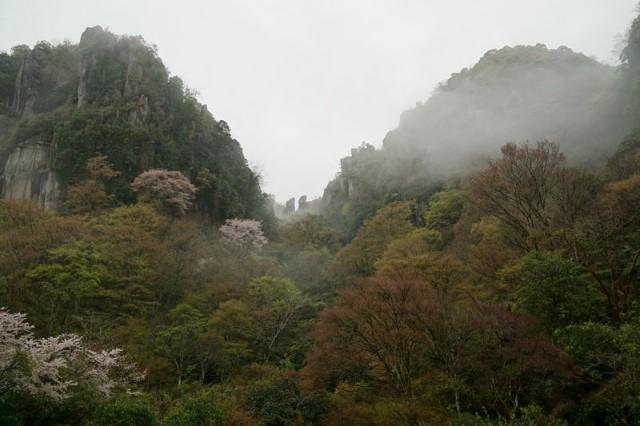 f:id:hitachibana:20210409110144j:image