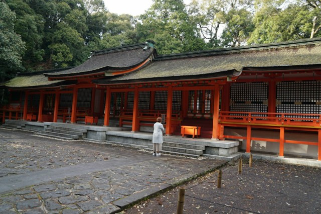 f:id:hitachibana:20210412002624j:image