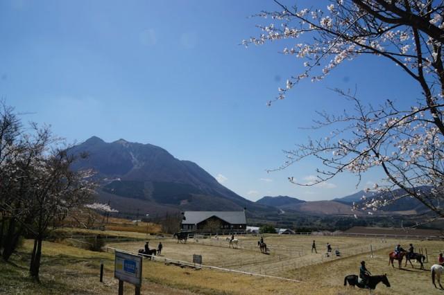 f:id:hitachibana:20210412214019j:image