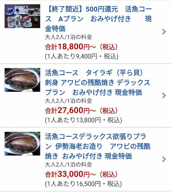 f:id:hitachibana:20210503201959j:image