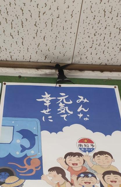 f:id:hitachibana:20210506134127j:image
