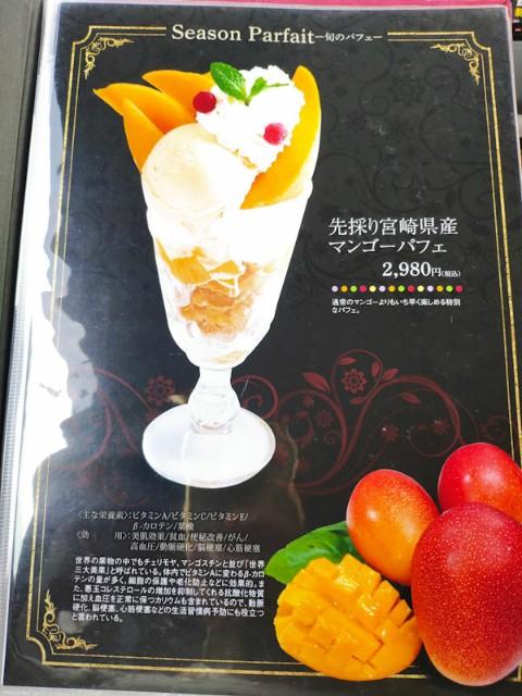 f:id:hitachibana:20210506205325j:image