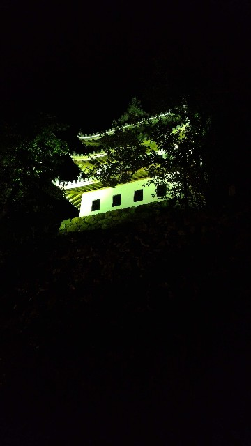 f:id:hitachibana:20210523025339j:image