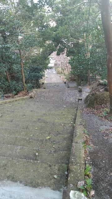 f:id:hitachibana:20210525182742j:image