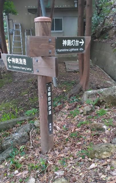 f:id:hitachibana:20210525182807j:image