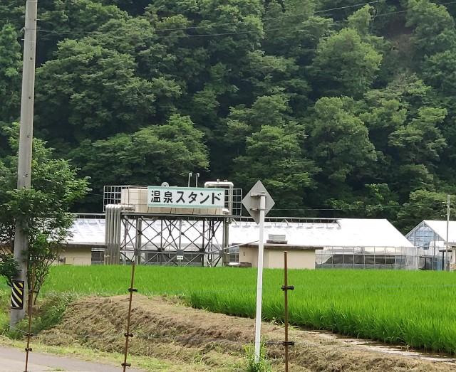 f:id:hitachibana:20210710221148j:image