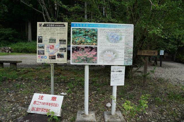 f:id:hitachibana:20210718143720j:image