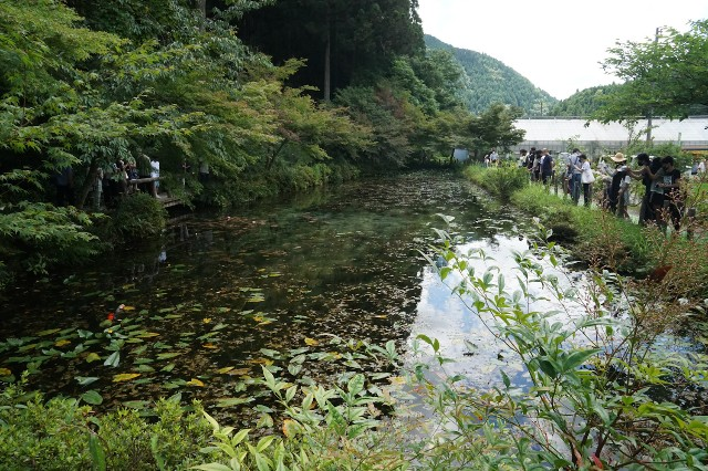 f:id:hitachibana:20210718143938j:image