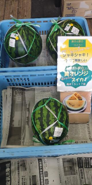 f:id:hitachibana:20210718215744j:image
