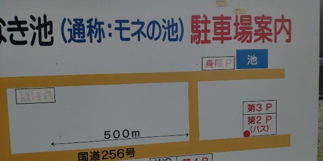 f:id:hitachibana:20210718215844j:image