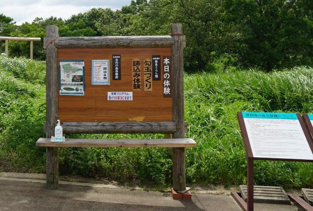 f:id:hitachibana:20210723085624j:image