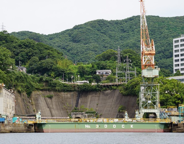 f:id:hitachibana:20210730230044j:image