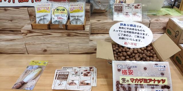 f:id:hitachibana:20210804221531j:image