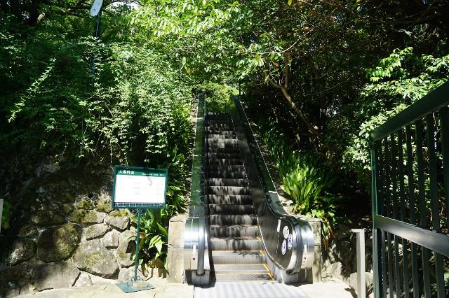 f:id:hitachibana:20210808031508j:image