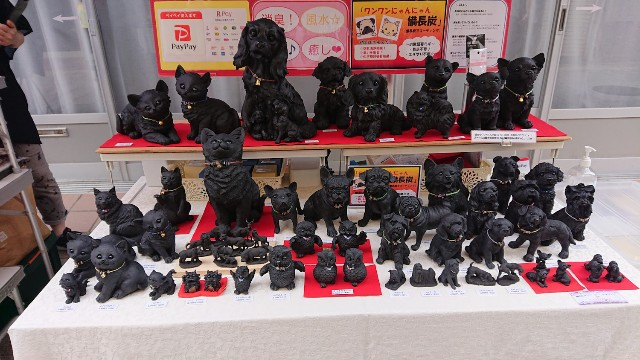 f:id:hitachibana:20210811080238j:image