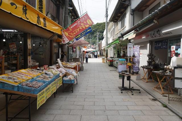 f:id:hitachibana:20210813220220j:image