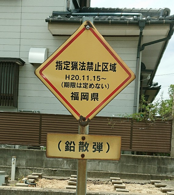 f:id:hitachibana:20210816220834j:image