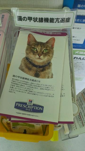 f:id:hitachibana:20210920003047j:image