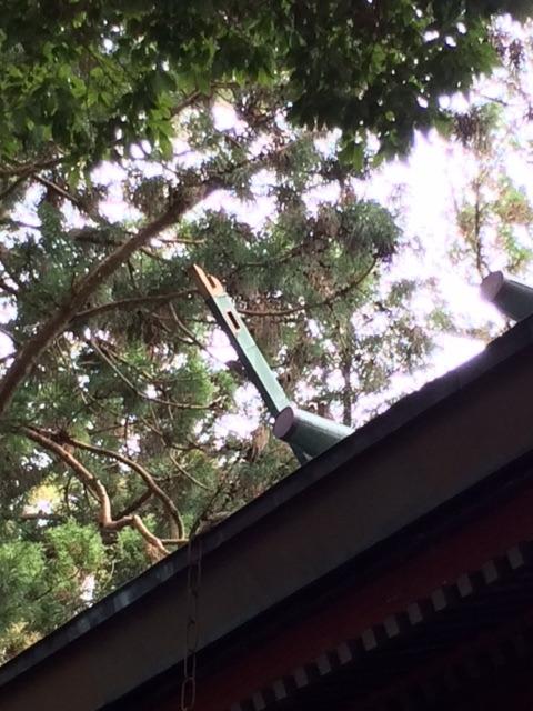 f:id:hitachikoku-taityo:20200421192829j:plain