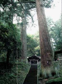 f:id:hitachikoku-taityo:20200423194506j:plain