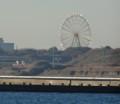 20140106海浜公園
