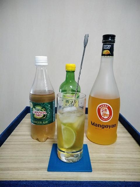 f:id:hito-game-cocktail:20201222205433j:plain
