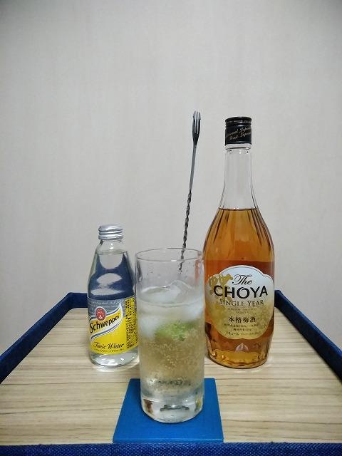 f:id:hito-game-cocktail:20201228100537j:plain