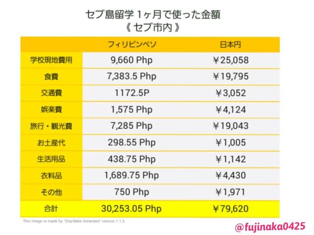 f:id:hitomi-fujinaka:20170718005008j:plain