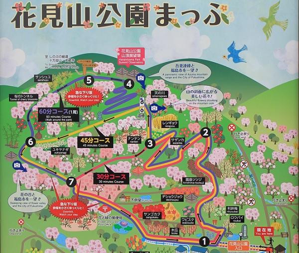 花見山公園3:plain