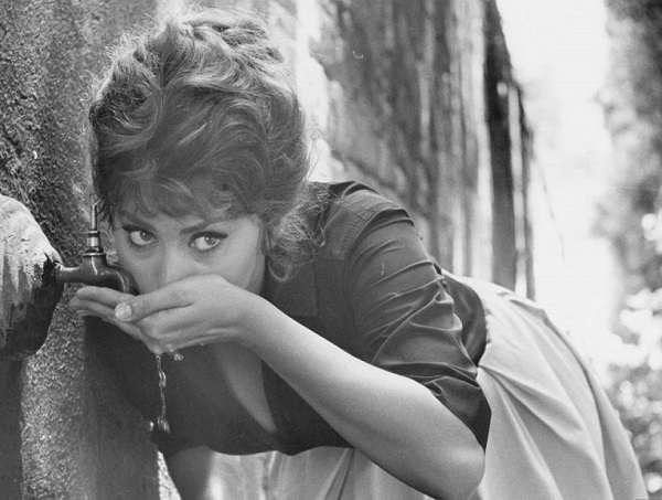 Sophia-Loren40