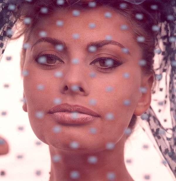 Sophia-Loren104