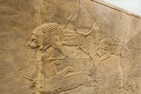 British Museum アッリシアのライオンのレリーフ The Royal lion hunt reliefs3