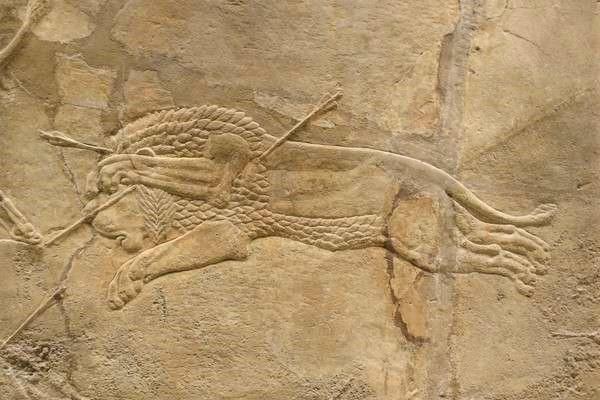British Museum アッリシアのライオンのレリーフ The Royal lion hunt reliefs5