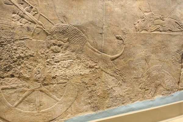 British Museum アッリシアのライオンのレリーフ The Royal lion hunt reliefs6