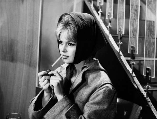 Brigitte Bardot104